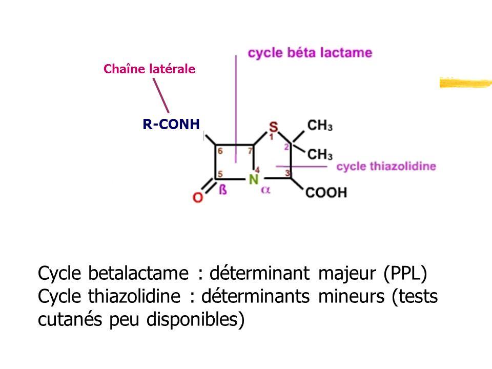 R-CONH Chaîne latérale Cycle betalactame : déterminant majeur (PPL) Cycle thiazolidine : déterminants mineurs (tests cutanés peu disponibles)