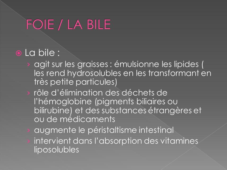 La bile : agit sur les graisses : émulsionne les lipides ( les rend hydrosolubles en les transformant en très petite particules) rôle délimination des