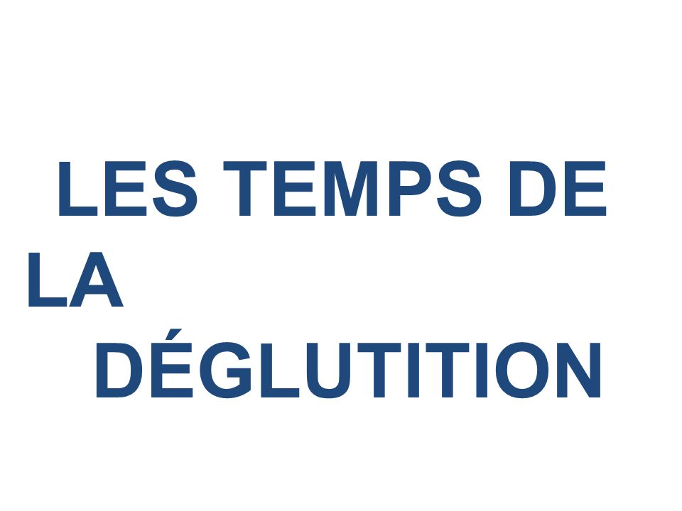 LES TEMPS DE LA DÉGLUTITION