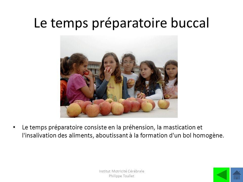 Institut Motricité Cérébrale Philippe Toullet Le temps préparatoire buccal Le temps préparatoire consiste en la préhension, la mastication et l'insali