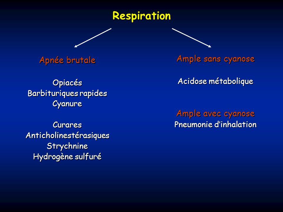 Respiration Apnée brutale Opiacés Barbituriques rapides CyanureCuraresAnticholinestérasiquesStrychnine Hydrogène sulfuré Ample sans cyanose Acidose mé