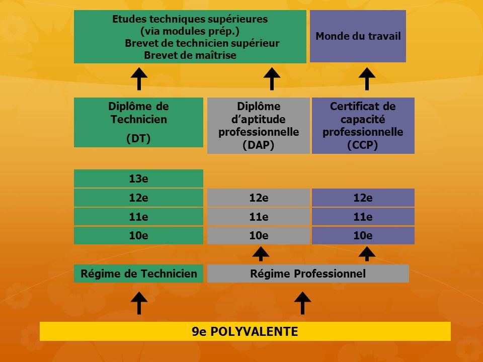 9e POLYVALENTE 12e 11e 10e 13e 12e 11e 10e Diplôme de Technicien (DT) Régime ProfessionnelRégime de Technicien Etudes techniques supérieures (via modu