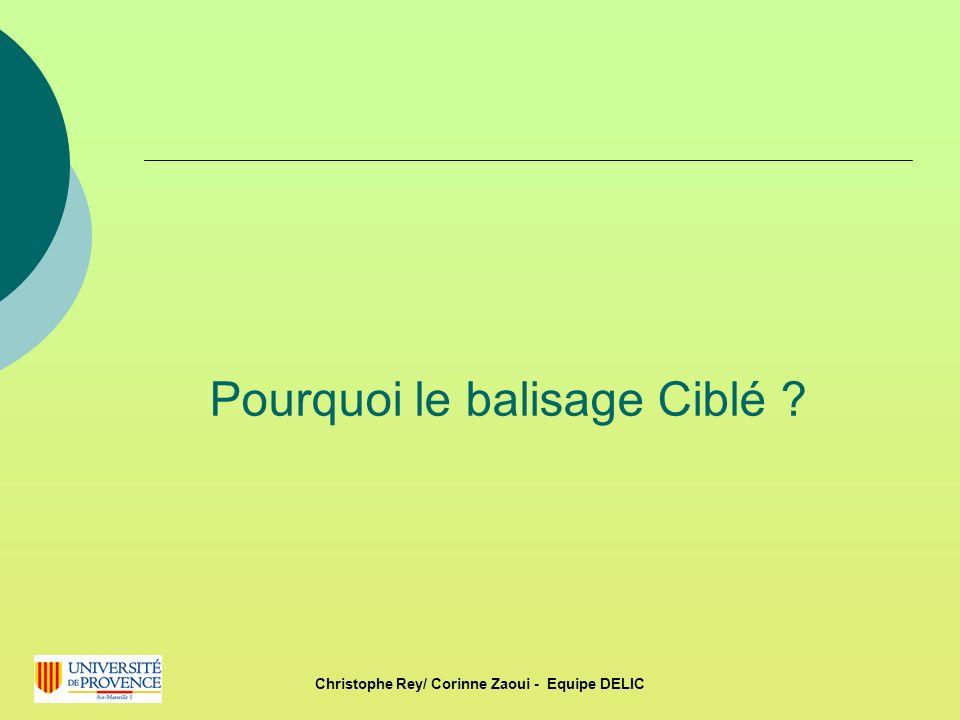Pourquoi le balisage Ciblé ? Christophe Rey/ Corinne Zaoui - Equipe DELIC