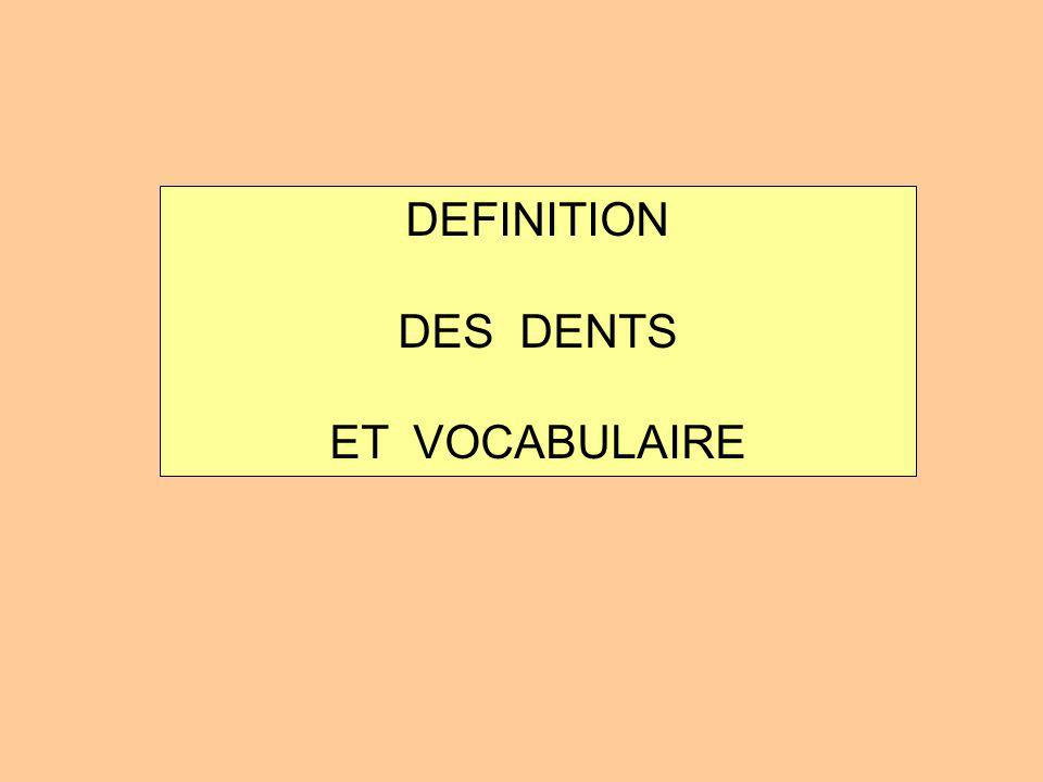 DEFINITION DES DENTS ET VOCABULAIRE