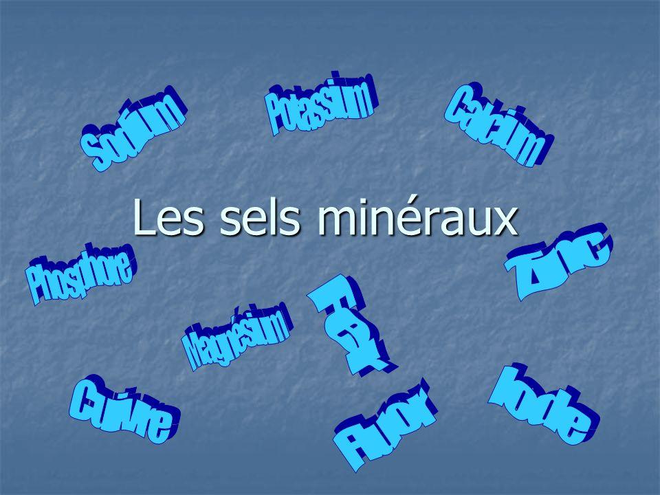 Les sels minéraux