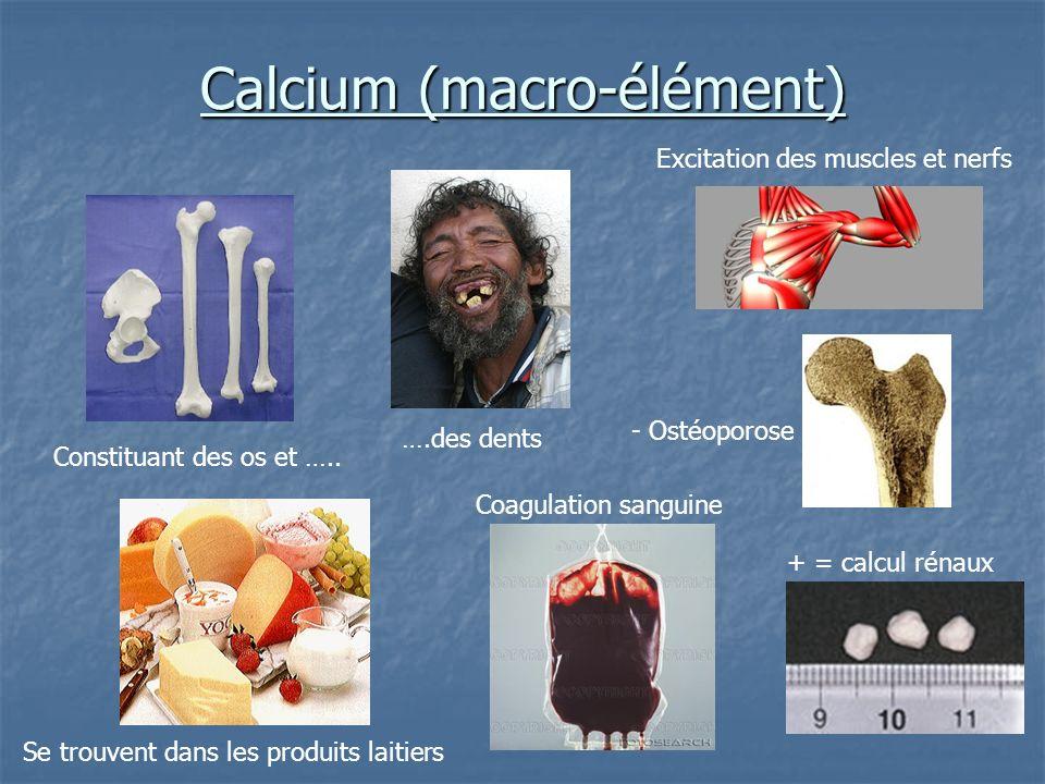 Calcium (macro-élément) Constituant des os et ….. ….des dents Se trouvent dans les produits laitiers + = calcul rénaux Excitation des muscles et nerfs