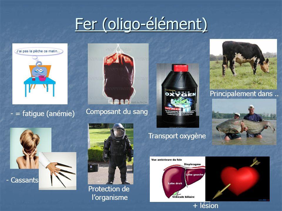 Fer (oligo-élément) Composant du sang - = fatigue (anémie) Transport oxygène Principalement dans.. + lésion Protection de lorganisme - Cassants
