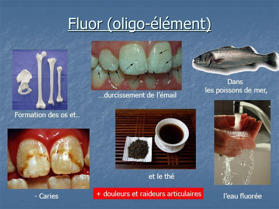 Fluor (oligo-élément) …durcissement de lémail et le thé Formation des os et.. + douleurs et raideurs articulaires Dans les poissons de mer, - Cariesle