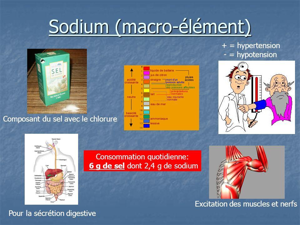 Sodium (macro-élément) Composant du sel avec le chlorure Pour la sécrétion digestive Excitation des muscles et nerfs + = hypertension - = hypotension