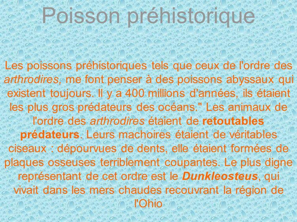 Poisson préhistorique Les poissons préhistoriques tels que ceux de l'ordre des arthrodires, me font penser à des poissons abyssaux qui existent toujou
