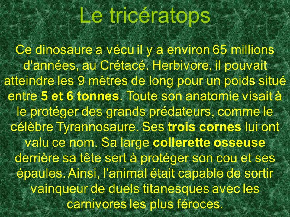 Ce dinosaure a vécu il y a environ 65 millions d'années, au Crétacé. Herbivore, il pouvait atteindre les 9 mètres de long pour un poids situé entre 5
