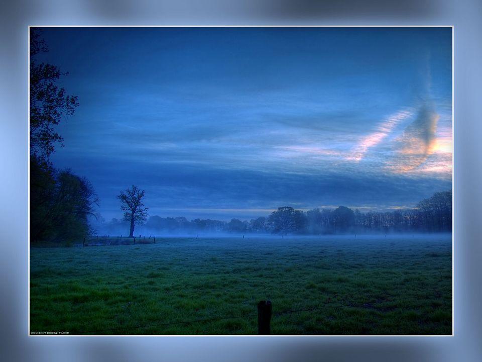 Chaque matin…accepter de renaître à la Vie… Accepter votre aujourd'hui… Mais aussi vos émotions...sans étouffement… Gravir doucement ces échelons dans