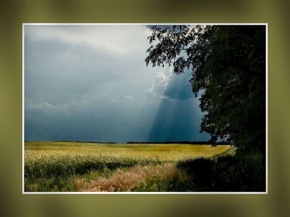 Le Silence se démarque dans la Présence… Le Silence pour sentir...la Vie qui est réelle… Ayez cette belle transparence… Soyez authentique…sera votre r