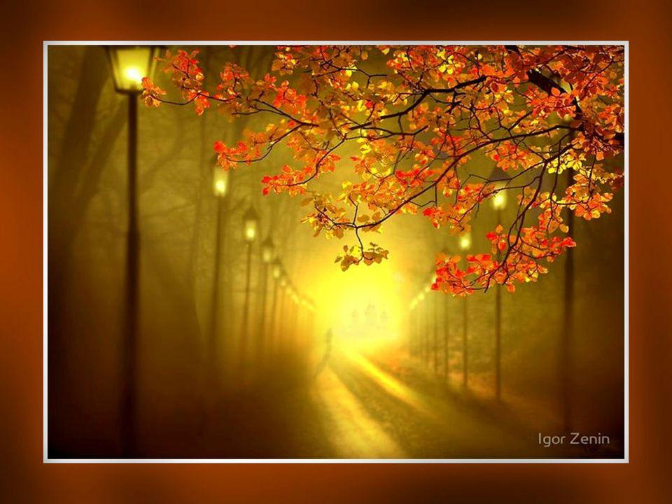 Accepter ce demain incertain… Pour marcher vers de nouveaux chemins… Pour trouver la vraie route… Sans le moindre doute… Savoir accepter les plans de