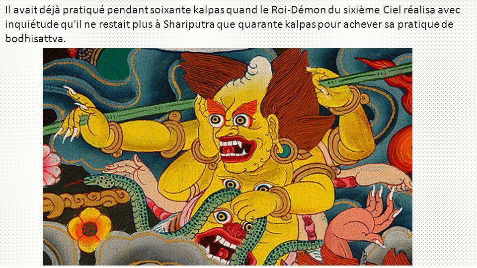 Il avait déjà pratiqué pendant soixante kalpas quand le Roi-Démon du sixième Ciel réalisa avec inquiétude qu'il ne restait plus à Shariputra que quara