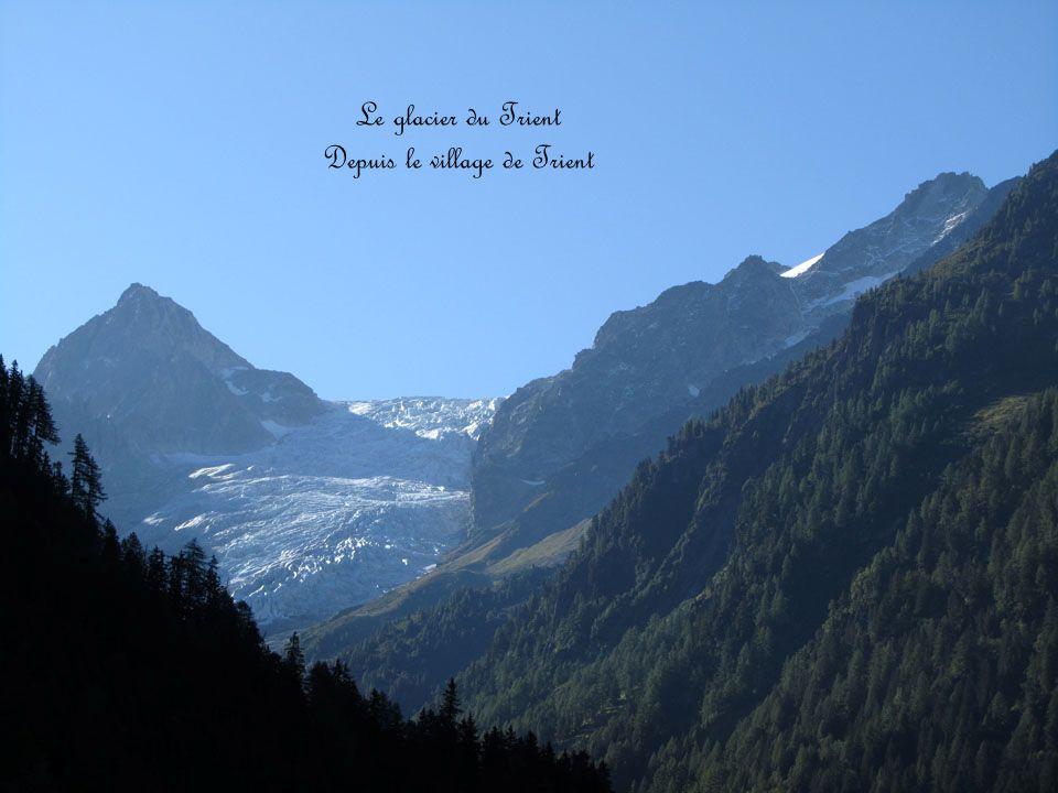 Le glacier du Trient Depuis le village de Trient