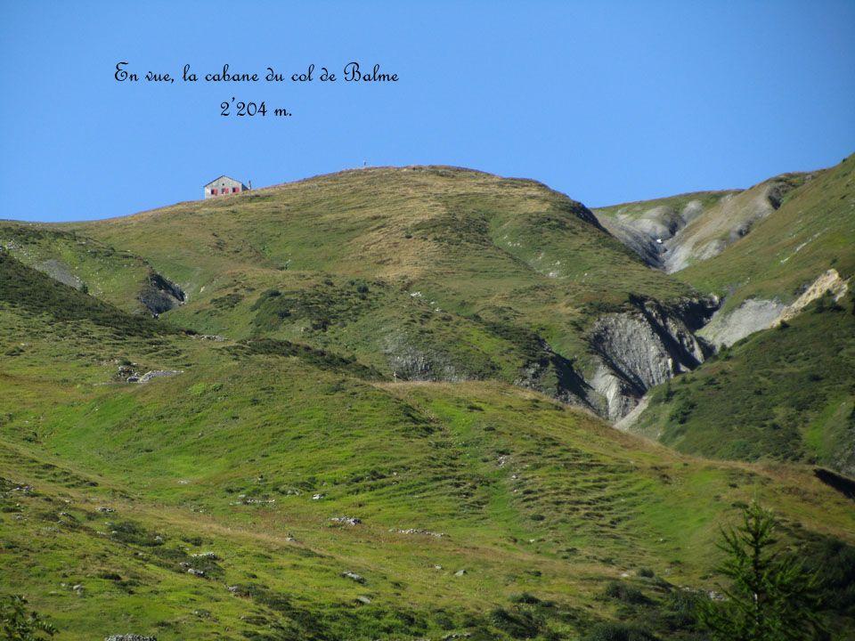 En vue, la cabane du col de Balme 2204 m.
