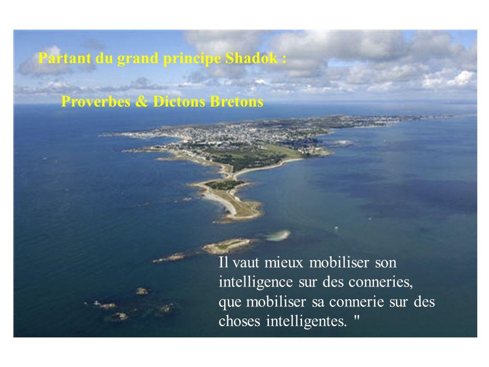 Partant du grand principe Shadok : Il vaut mieux mobiliser son intelligence sur des conneries, que mobiliser sa connerie sur des choses intelligentes.