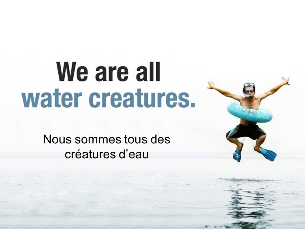 Nous sommes tous des créatures deau
