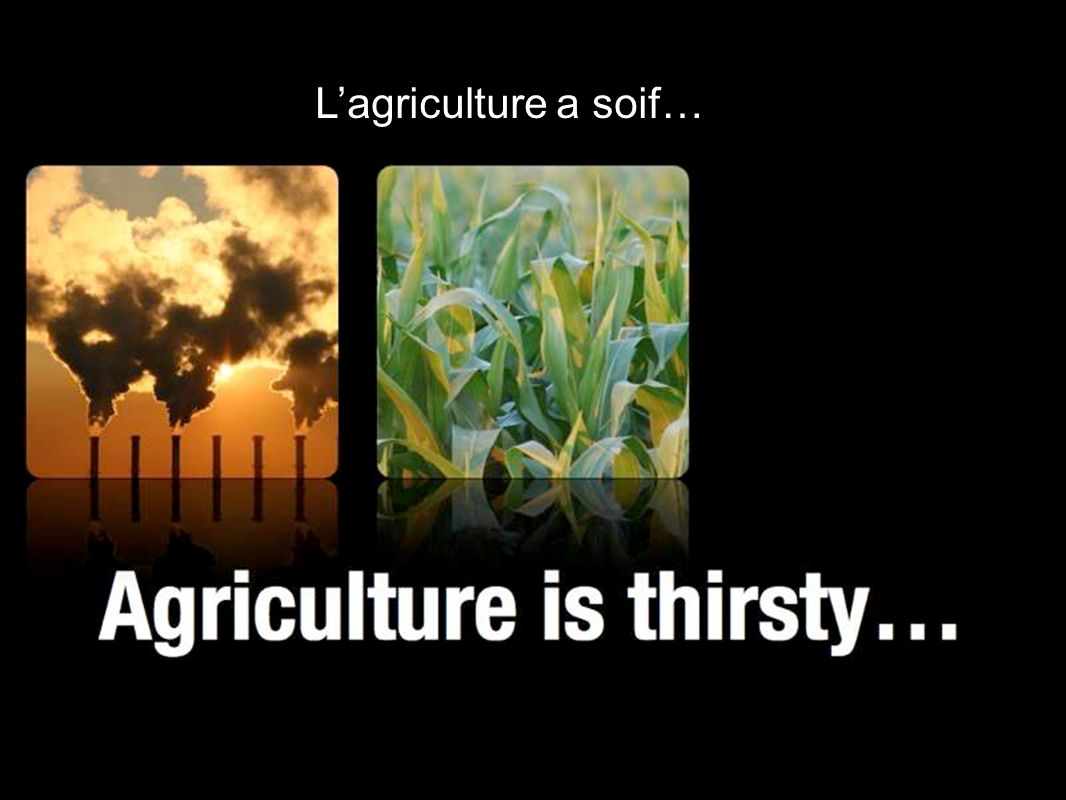 Lagriculture a soif…