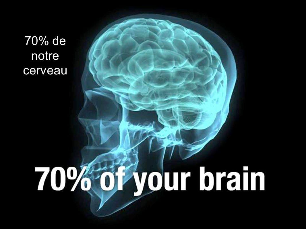 70% de notre cerveau