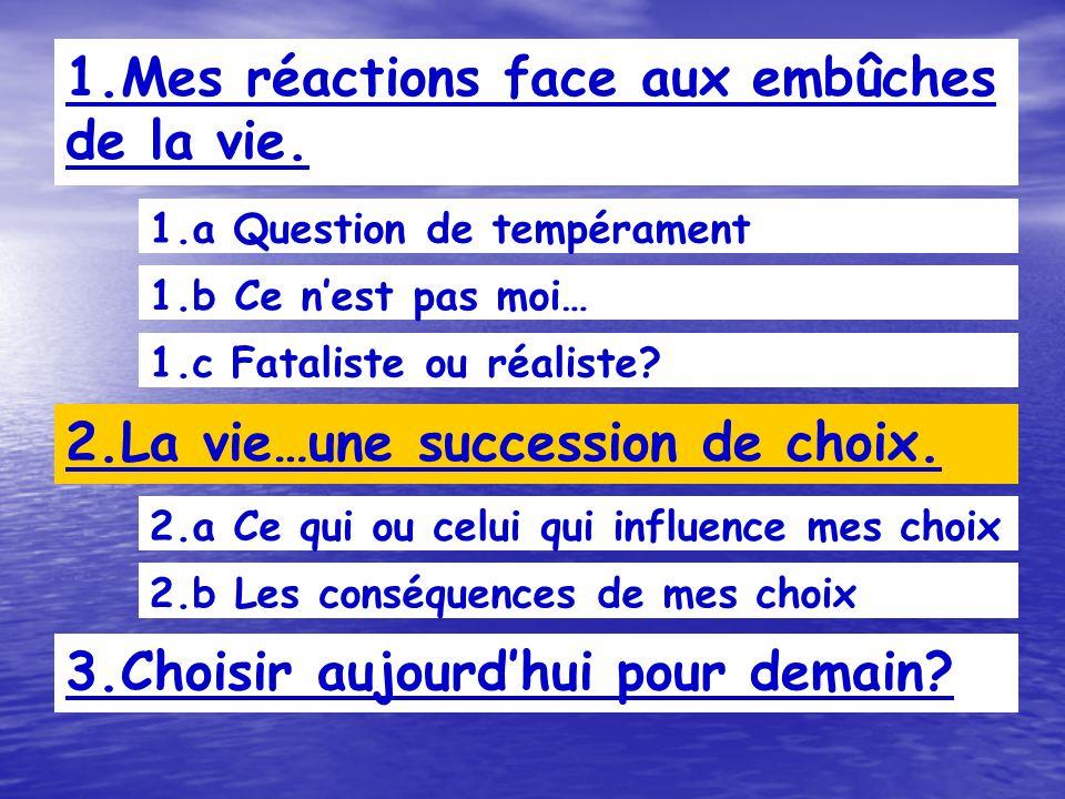 1.b Ce nest pas moi… 1.a Question de tempérament 1.Mes réactions face aux embûches de la vie.