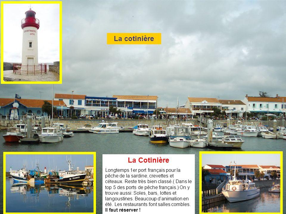 La Cotinière Longtemps 1er port français pour la pêche de la sardine, crevettes et céteaux.