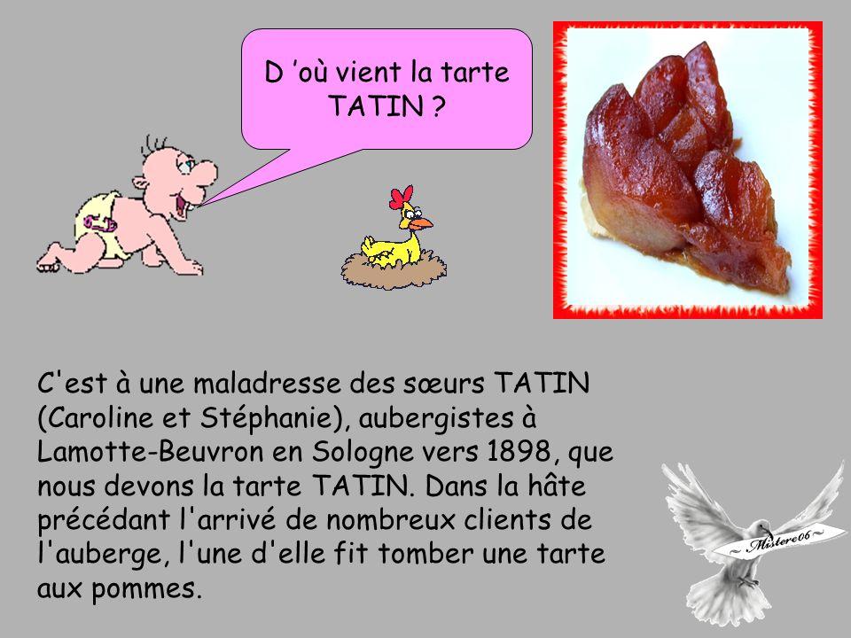 C est à une maladresse des sœurs TATIN (Caroline et Stéphanie), aubergistes à Lamotte-Beuvron en Sologne vers 1898, que nous devons la tarte TATIN.