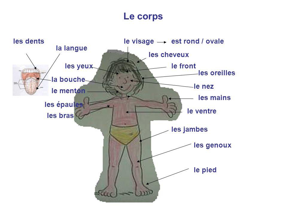 1a) Remplacez le mot « jambe » par gorge, tête, main, bouche : Jai mal à la jambe.