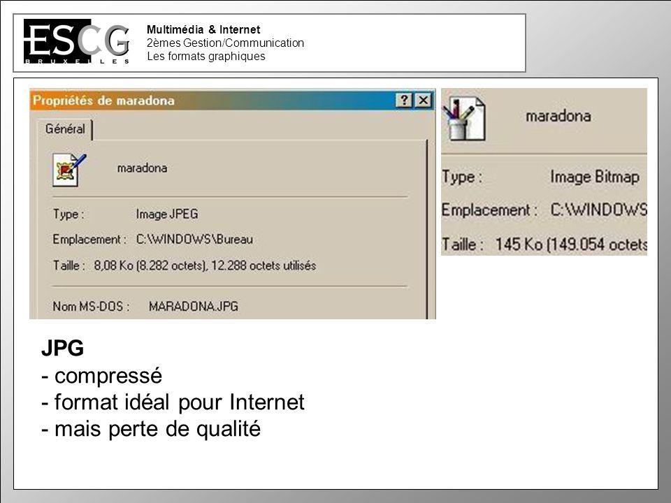10 Multimédia & Internet 2èmes Gestion/Communication Les formats graphiques JPG - compressé - format idéal pour Internet - mais perte de qualité