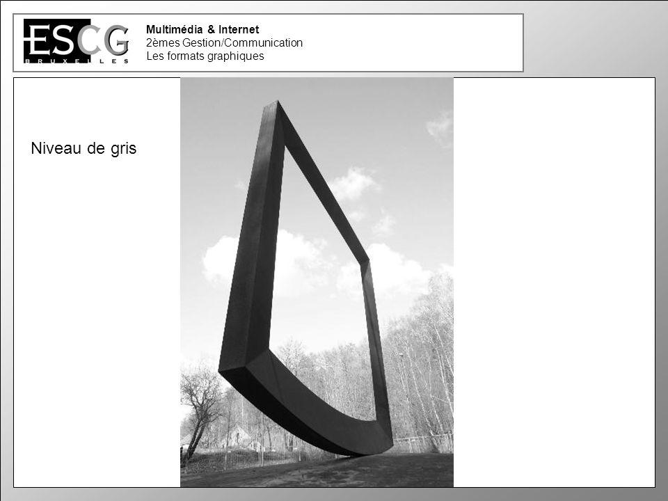 18 Multimédia & Internet 2èmes Gestion/Communication Les formats graphiques Niveau de gris