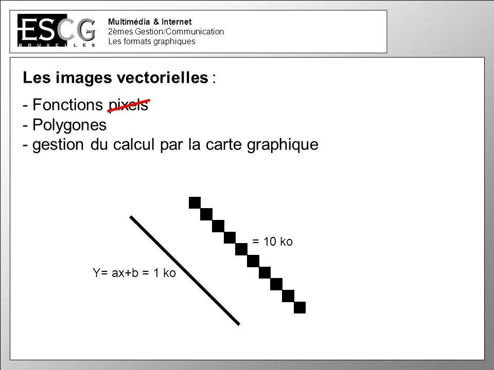 20 Multimédia & Internet 2èmes Gestion/Communication Les formats graphiques Les images vectorielles : - Fonctions pixels - Polygones - gestion du calcul par la carte graphique = 10 ko Y= ax+b = 1 ko