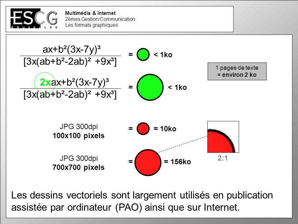 23 Multimédia & Internet 2èmes Gestion/Communication Les formats graphiques JPG 300dpi 100x100 pixels = = 10ko Les dessins vectoriels sont largement utilisés en publication assistée par ordinateur (PAO) ainsi que sur Internet.