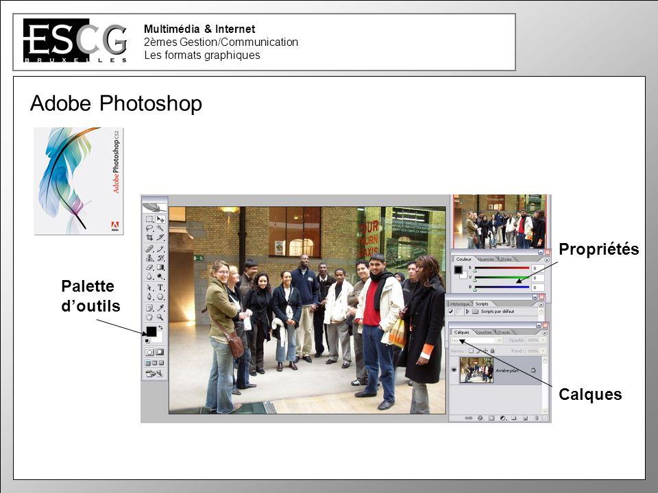 32 Multimédia & Internet 2èmes Gestion/Communication Les formats graphiques Adobe Photoshop Palette doutils Propriétés Calques