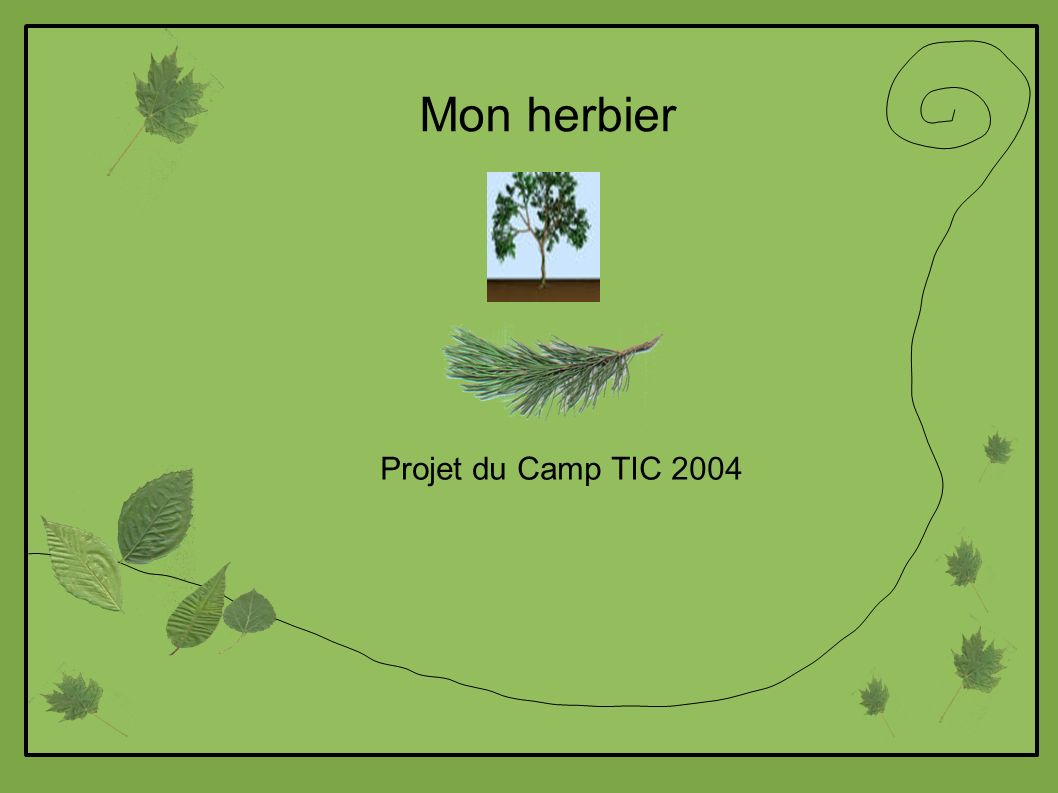 Mon herbier Projet du Camp TIC 2004