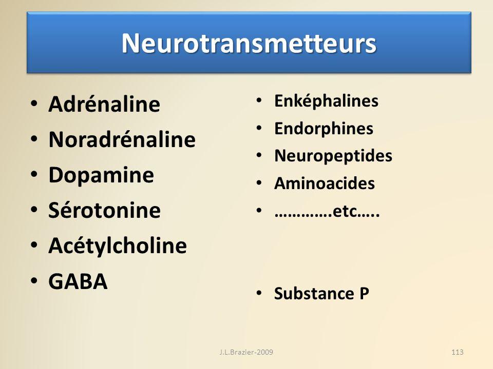 NeurotransmetteursNeurotransmetteurs Adrénaline Noradrénaline Dopamine Sérotonine Acétylcholine GABA Enképhalines Endorphines Neuropeptides Aminoacide
