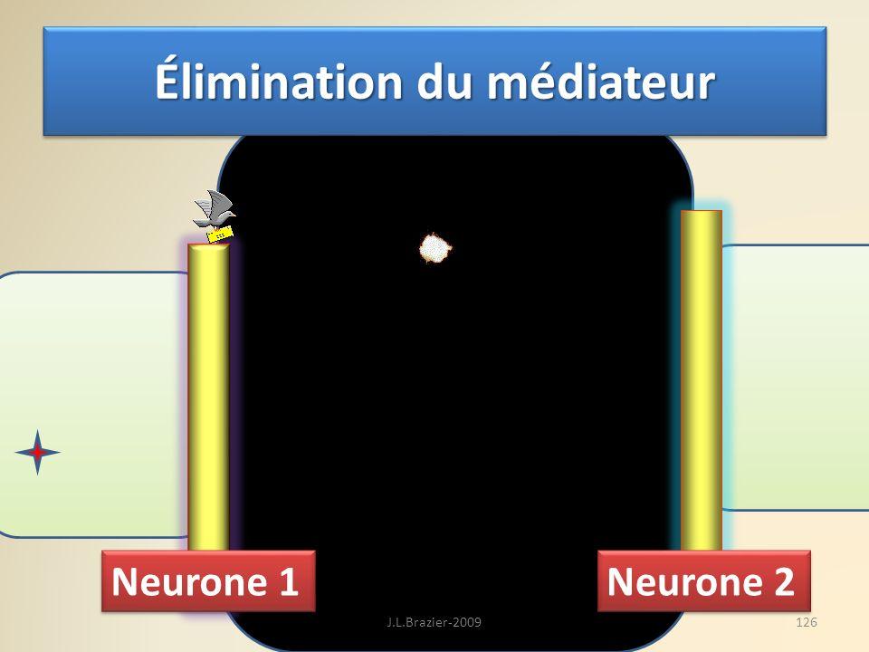 Neurone 1 Neurone 2 Élimination du médiateur 126J.L.Brazier-2009