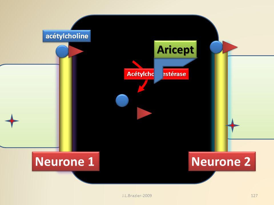 Neurone 1 Neurone 2 acétylcholineacétylcholine AcétylcholinestéraseAcétylcholinestérase AriceptAricept 127J.L.Brazier-2009