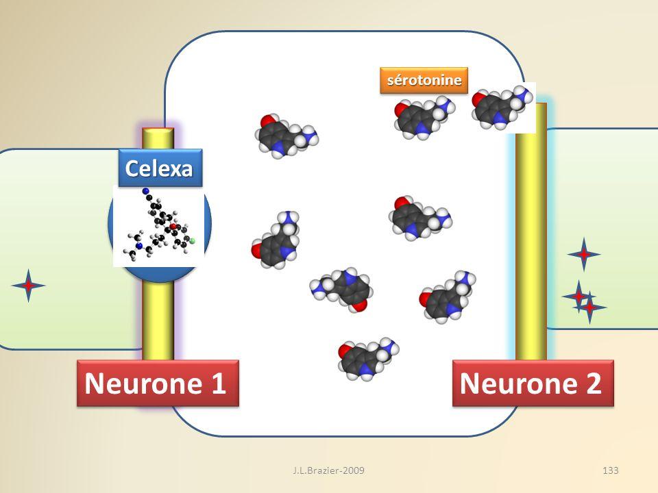 Neurone 1 Neurone 2 CelexaCelexa sérotoninesérotonine 133J.L.Brazier-2009