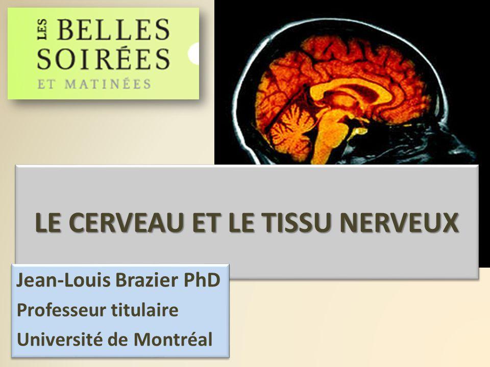 LE CERVEAU ET LE TISSU NERVEUX Jean-Louis Brazier PhD Professeur titulaire Université de Montréal Jean-Louis Brazier PhD Professeur titulaire Universi
