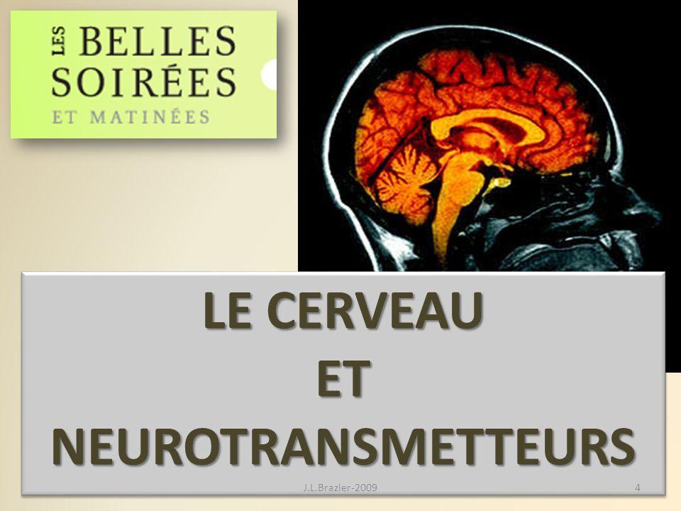 LE CERVEAU ET NEUROTRANSMETTEURS LE CERVEAU ET NEUROTRANSMETTEURS 4J.L.Brazier-2009