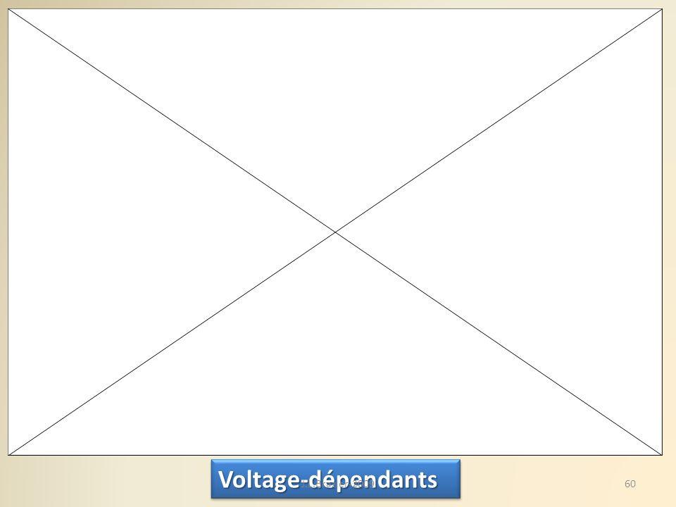 Voltage-dépendantsVoltage-dépendants 60J.L.Brazier-2009