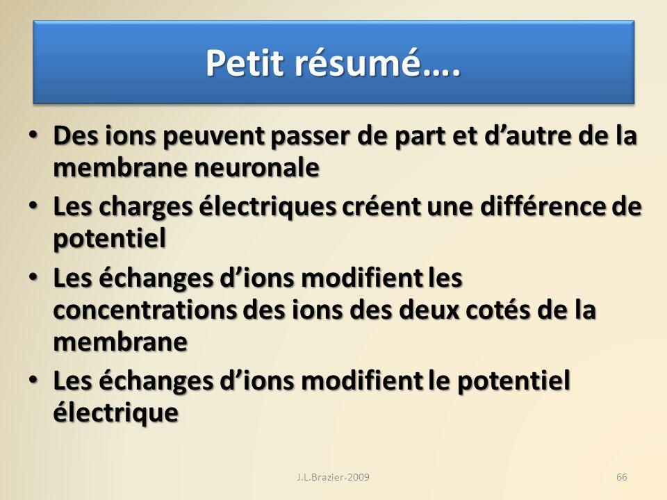 Petit résumé…. Des ions peuvent passer de part et dautre de la membrane neuronale Des ions peuvent passer de part et dautre de la membrane neuronale L