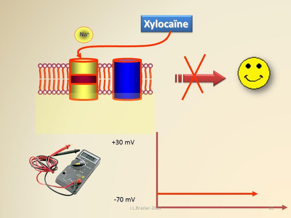 K+K+K+K+ Na + -70 mV +30 mV XylocaïneXylocaïne 85J.L.Brazier-2009