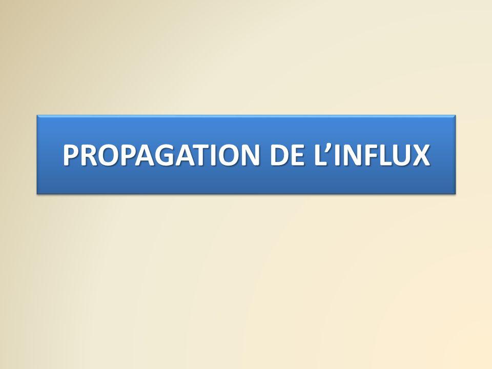PROPAGATION DE LINFLUX