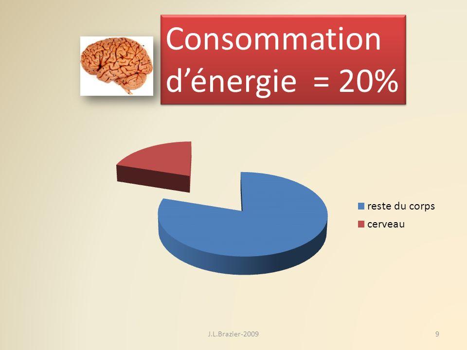 Consommation dénergie = 20% Consommation dénergie = 20% 9J.L.Brazier-2009
