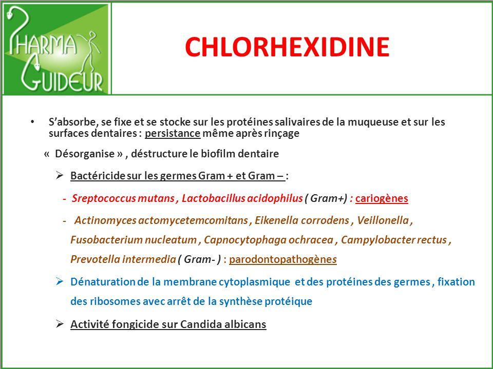CHLORHEXIDINE Structure moléculaire proche des protéines Famille des Biguanides De nombreuses études fondamentales et cliniques ont été réalisées
