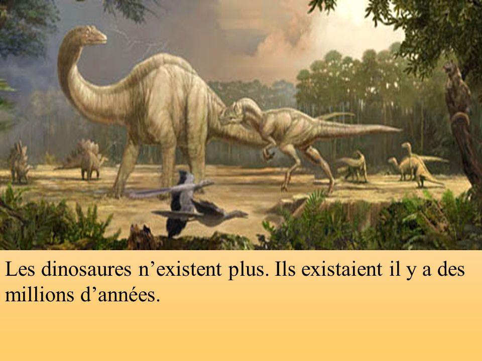 Les dinosaures nexistent plus. Ils existaient il y a des millions dannées.