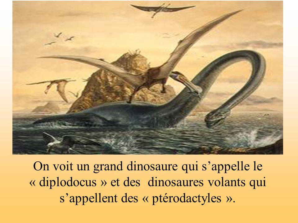 On voit un grand dinosaure qui sappelle le « diplodocus » et des dinosaures volants qui sappellent des « ptérodactyles ».