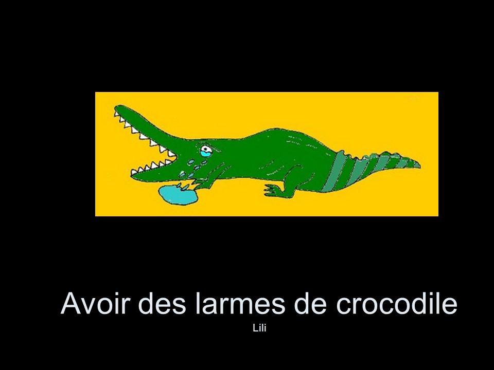 Avoir des larmes de crocodile Lili